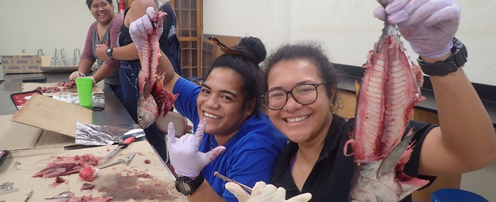 2 ASCC Marine Science Students Direct Fish During A Lab Activity.